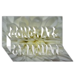 White Flowers Congrats Graduate 3D Greeting Card (8x4)