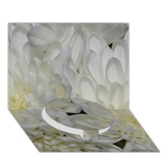 White Flowers 2 Circle Bottom 3d Greeting Card (7x5)