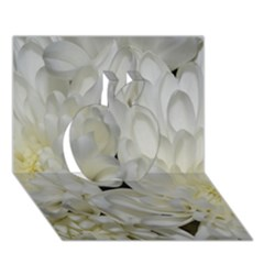 White Flowers 2 Apple 3D Greeting Card (7x5)