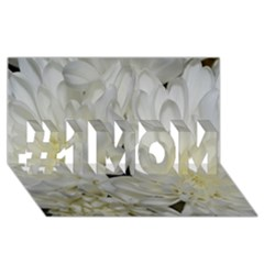 White Flowers 2 #1 MOM 3D Greeting Cards (8x4)