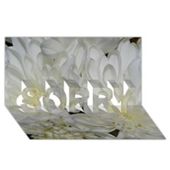 White Flowers 2 SORRY 3D Greeting Card (8x4)