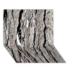 TREE BARK Apple 3D Greeting Card (7x5)