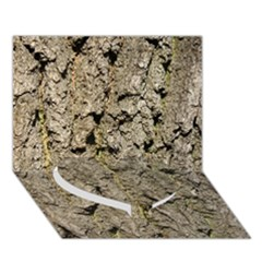Grey Tree Bark Heart Bottom 3d Greeting Card (7x5)