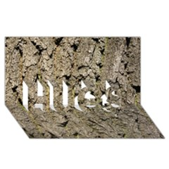 GREY TREE BARK HUGS 3D Greeting Card (8x4)