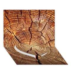 CROSS SECTION OF AN OLD TREE Heart Bottom 3D Greeting Card (7x5)