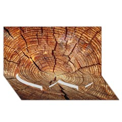 Cross Section Of An Old Tree Twin Heart Bottom 3d Greeting Card (8x4)