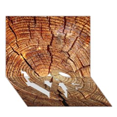 CROSS SECTION OF AN OLD TREE LOVE Bottom 3D Greeting Card (7x5)