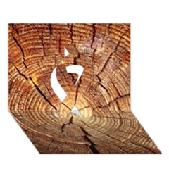 CROSS SECTION OF AN OLD TREE Ribbon 3D Greeting Card (7x5)