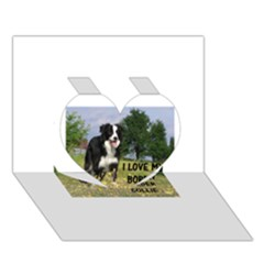 Border Collie Love W Picture Heart 3d Greeting Card (7x5)