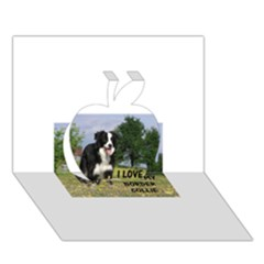 Border Collie Love W Picture Apple 3D Greeting Card (7x5)