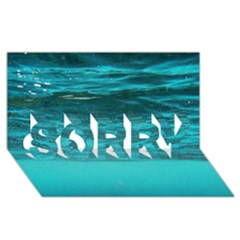 UNDERWATER WORLD SORRY 3D Greeting Card (8x4)