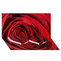 Beautifully Red Twin Heart Bottom 3D Greeting Card (8x4)