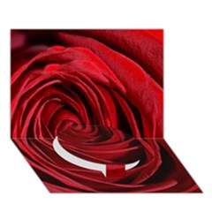 Beautifully Red Circle Bottom 3D Greeting Card (7x5)