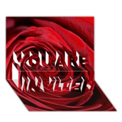Beautifully Red YOU ARE INVITED 3D Greeting Card (7x5)