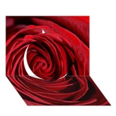 Beautifully Red Circle 3D Greeting Card (7x5)
