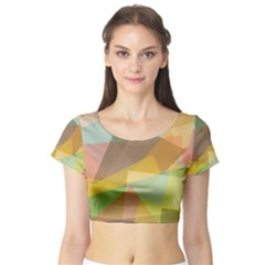 Fading shapes Short Sleeve Crop Top