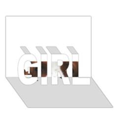 Welsh Springer Spaniel Eyes GIRL 3D Greeting Card (7x5)
