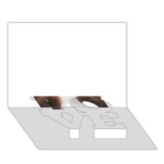Welsh Springer Spaniel Eyes LOVE Bottom 3D Greeting Card (7x5)