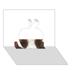 Welsh Springer Spaniel Eyes Apple 3D Greeting Card (7x5)
