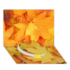 YELLOW MAPLE LEAVES Circle Bottom 3D Greeting Card (7x5)