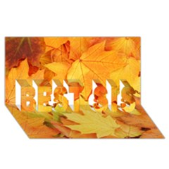 Yellow Maple Leaves Best Sis 3d Greeting Card (8x4)