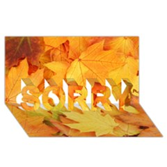 YELLOW MAPLE LEAVES SORRY 3D Greeting Card (8x4)
