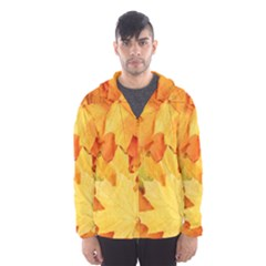 YELLOW MAPLE LEAVES Hooded Wind Breaker (Men)