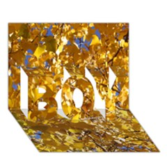 Yellow Leaves Boy 3d Greeting Card (7x5)