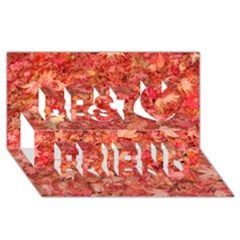 RED MAPLE LEAVES Best Friends 3D Greeting Card (8x4)