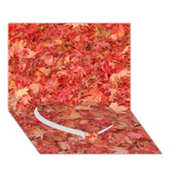 Red Maple Leaves Heart Bottom 3d Greeting Card (7x5)