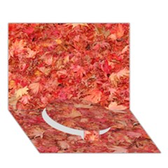 Red Maple Leaves Circle Bottom 3d Greeting Card (7x5)