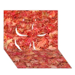 Red Maple Leaves Clover 3d Greeting Card (7x5)