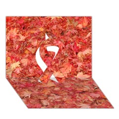 RED MAPLE LEAVES Ribbon 3D Greeting Card (7x5)