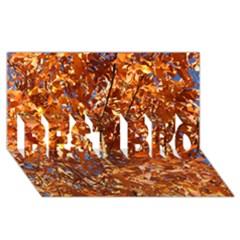 Orange Leaves Best Bro 3d Greeting Card (8x4)