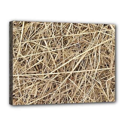 LIGHT COLORED STRAW Canvas 16  x 12