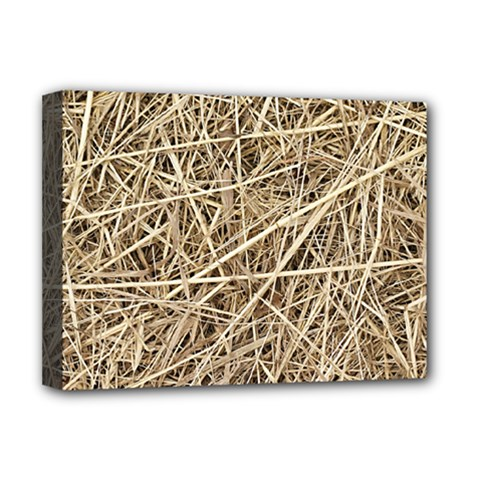 LIGHT COLORED STRAW Deluxe Canvas 16  x 12