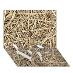 Light Colored Straw Love Bottom 3d Greeting Card (7x5)