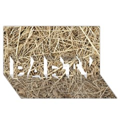 LIGHT COLORED STRAW PARTY 3D Greeting Card (8x4)