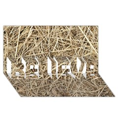 LIGHT COLORED STRAW BELIEVE 3D Greeting Card (8x4)