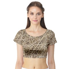 LIGHT COLORED STRAW Short Sleeve Crop Top