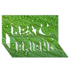 Green Leaf Drops Best Friends 3d Greeting Card (8x4)