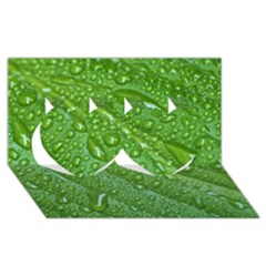 GREEN LEAF DROPS Twin Hearts 3D Greeting Card (8x4)