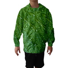 Green Leaf Drops Hooded Wind Breaker (kids)