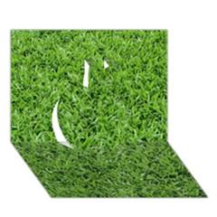 Green Grass 2 Apple 3d Greeting Card (7x5)