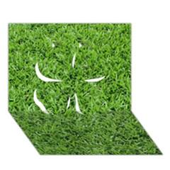 GREEN GRASS 2 Clover 3D Greeting Card (7x5)