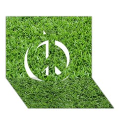Green Grass 2 Peace Sign 3d Greeting Card (7x5)
