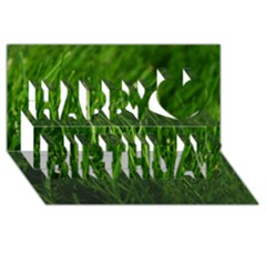 Green Grass 1 Happy Birthday 3d Greeting Card (8x4)