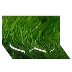 Green Grass 1 Twin Heart Bottom 3d Greeting Card (8x4)