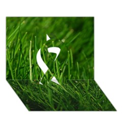 Green Grass 1 Ribbon 3d Greeting Card (7x5)