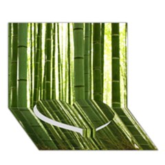 BAMBOO GROVE 2 Heart Bottom 3D Greeting Card (7x5)